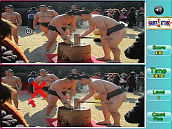 Sumo Spot Difference