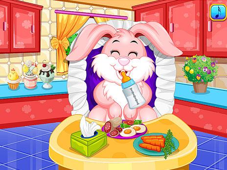 Bunny Care Description